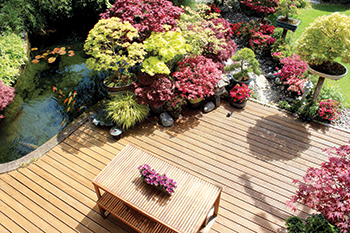 Panorama bamboo decking ... eco-sustainable solution.