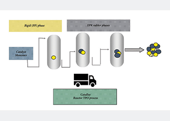 Figure 2: The Catalloy reactor TPO process.