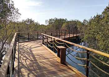 Jubail Mangrove Park ... a shift in the leisure offerings within Abu Dhabi,