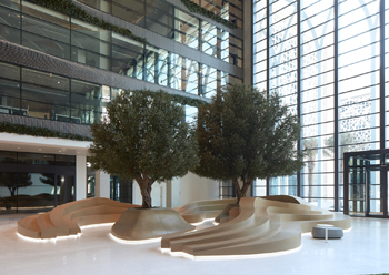 """The """"green"""" atrium ... anchored by two tall olive trees."""