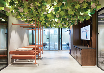 The feature acoustic baffles give a sense of being under a tree canopy.