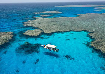 Boat owners and tour companies are doing a booming trade as campsite come up in the Neom area
