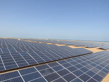 Masdar's Red Sea solar facility.