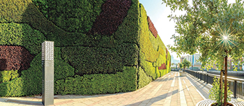 The Middle East's largest living green wall ... at Dubai Wharf.