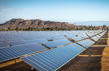 Oman's renewable energy projects will boast a total capacity of 1,600 MW.