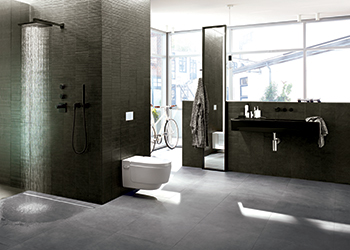 Geberit models are water efficient.