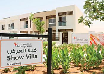 A Flamingo show villa.