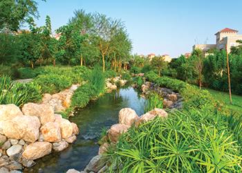 Woodland Garden at Al Barari.