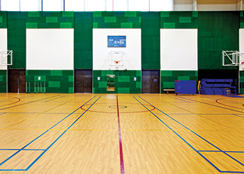 The indoor sports hall ... Heradesign panels.