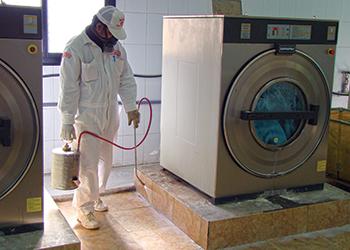 Masa uses modern pest control techniques.