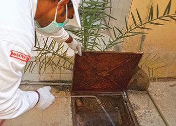 A Masa technician sprays a manhole to kill cockroaches.